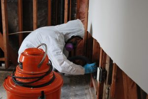Orange-County-Mold-Remediation-Professional